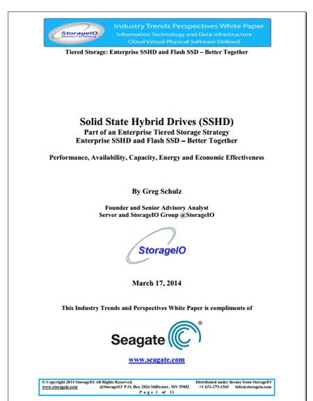 Storage I/O sshd white paper