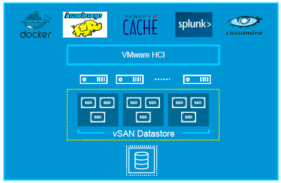 VMware vSAN and data center class applications