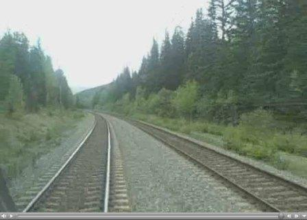 Two companies on parralel tracks offset by time