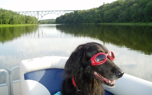Big Babe enjoying and boat ride and looking stylish during summer dog days