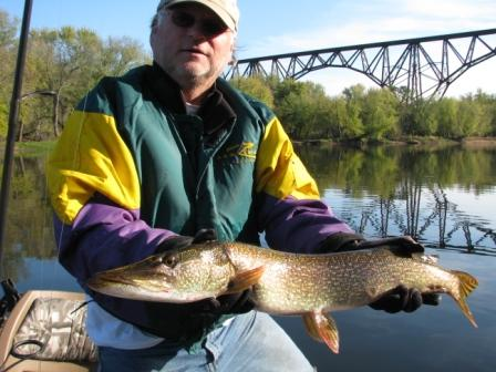Going where the fish are, fall on the St. Croix river