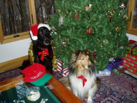 Holiday Hounds